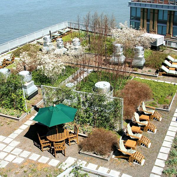 Battery park city the solaire
